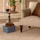 Limpa Carpetes